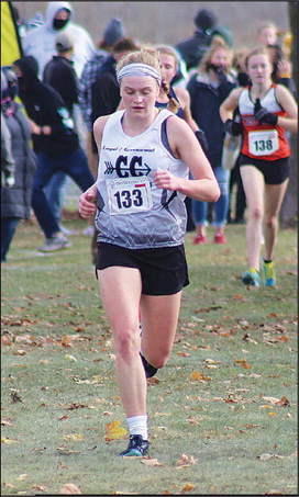 Schley 16th at state; Horvath gets another try next year