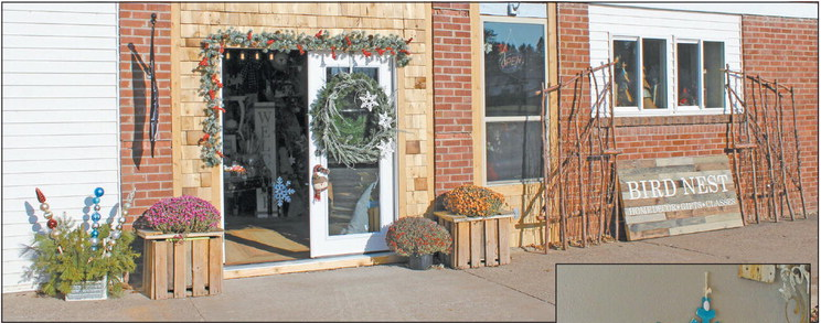 The Bird Nest brings business to Holcombe